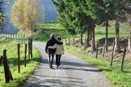 walking benefits 003